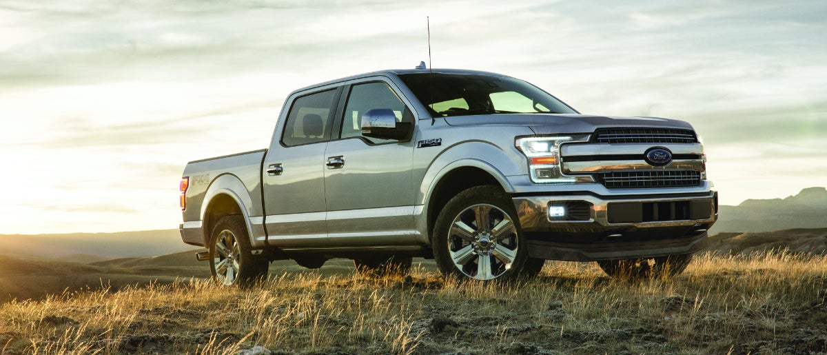 2019 Ford F 150 In Open Fields